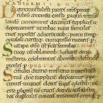 Lee Willett | Carolingian Minuscule